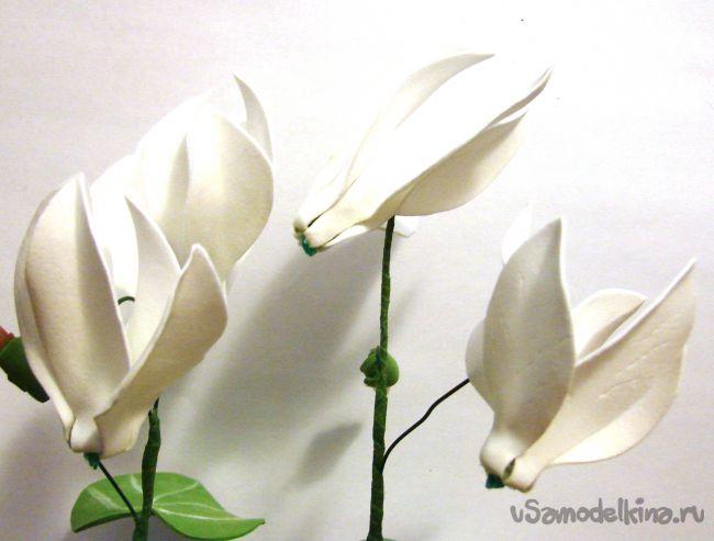 Белые цикламены из фоамирана